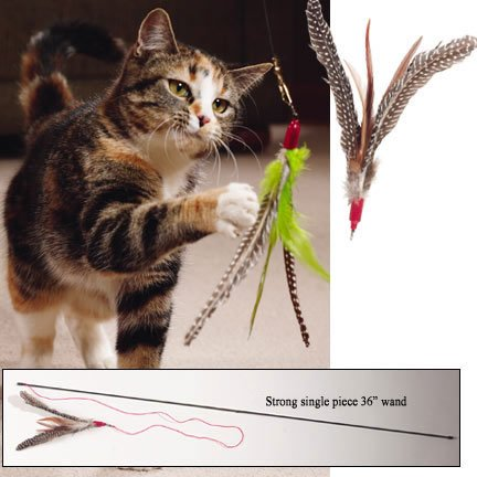 Best Cat Toys 2016 Top 10 Cat Toys Reviews Comparaboo